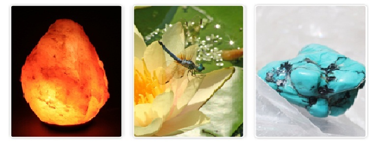 Mystic Dragonfly